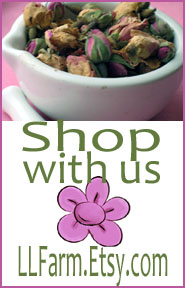 Shop with us on Etsy